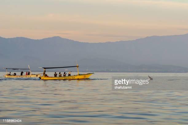 sunrise view over tourists watching for wild dolphins at bali, indonesia. - shaifulzamri imagens e fotografias de stock