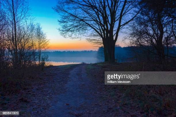 sunrise view 'path' - william mevissen stockfoto's en -beelden
