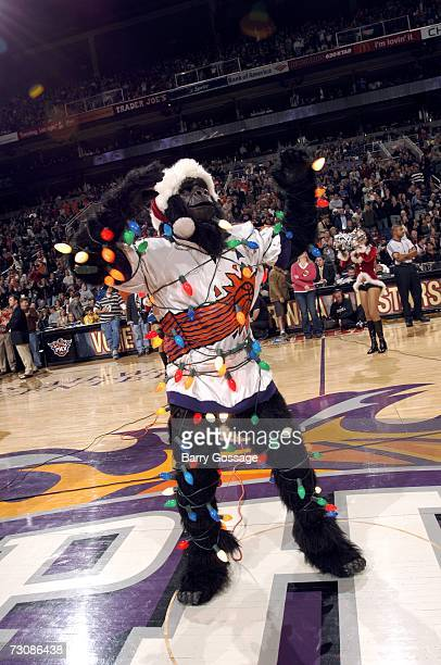 Suns team mascot Go the Gorilla entertains the crowd during the NBA game between the Washington Wizards and the Phoenix Suns at US Airways Arena on...