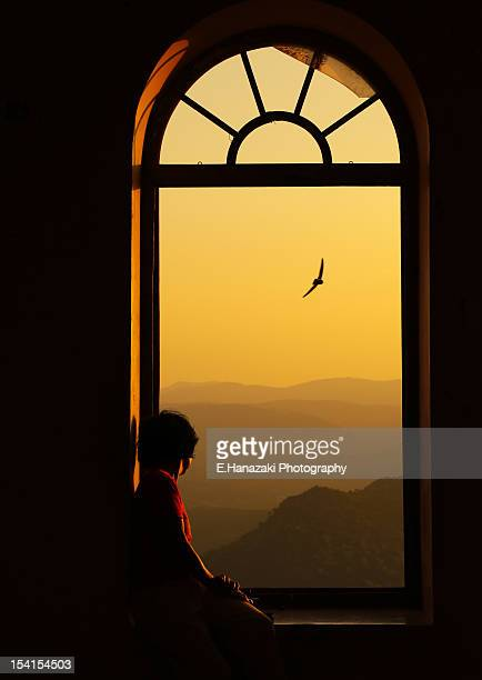 sunse sajjangarh sanctuary - udaipur stock pictures, royalty-free photos & images