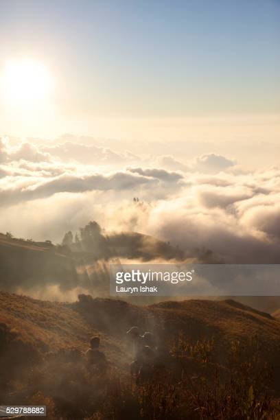 Sunset above the clouds, Mount Rinjani, Lombok Island, Indonesia