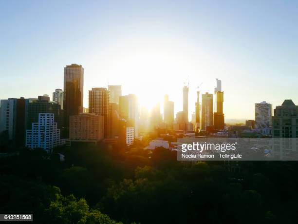 Sunset Aerial view of the Melbourne skyline with trees and Carlton Gardens