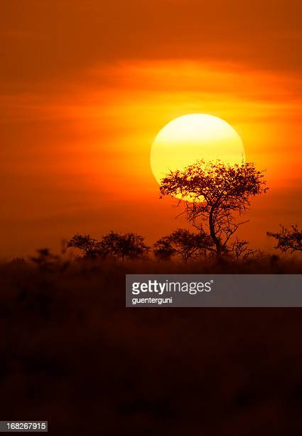 Sunset after a Safari-day in East Africa