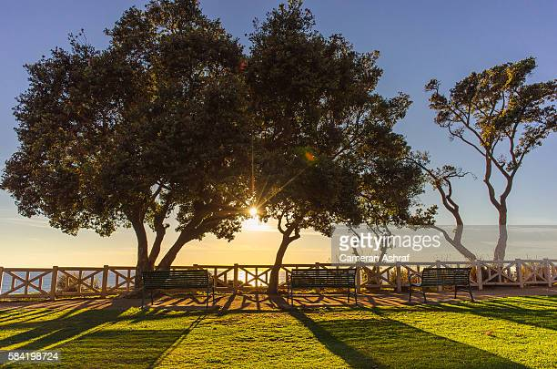 sunset and benches at park overlooking ocean in santa monica - sustainable development goals stock pictures, royalty-free photos & images