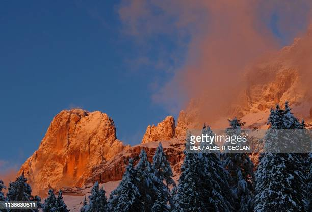 Sunset and clouds on the Rosengarten group with snowcovered firs in the foreground Eggental valley Dolomites TrentinoAlto Adige Italy