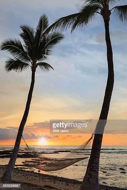 Hawaii Beach Sunset With Hammock
