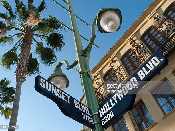 sunset and hollywood boulevard street sign - hollywood kalifornien bildbanksfoton och bilder