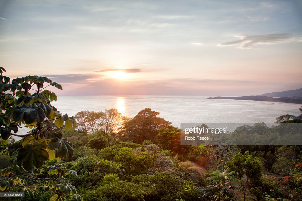 Sunset and landscape of jungle and ocean bay in Belize, Central America : Stock Photo