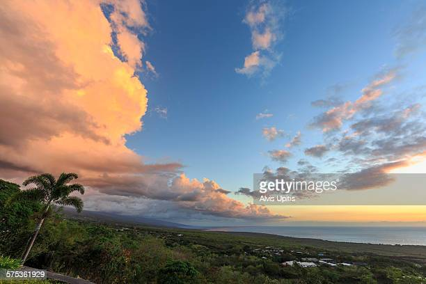 hdr sunset and palm in south kona, hawaii - kona coast stock photos and pictures