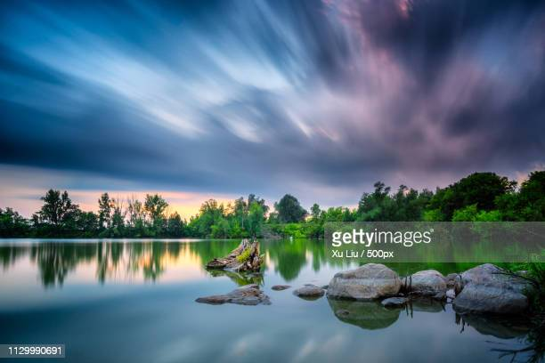 sunset and reflection - freshwater bird stock photos and pictures