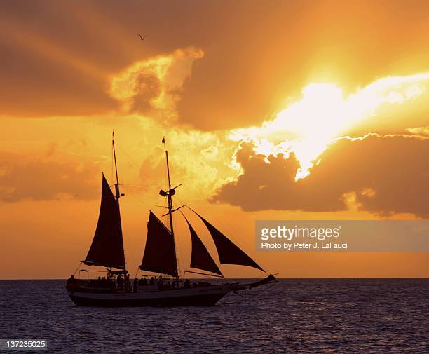 sunset and sailing boat - fauci stock pictures, royalty-free photos & images
