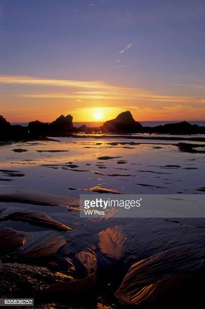 Sunset and tidepools at low tide near Seal Rock on the central Oregon coast