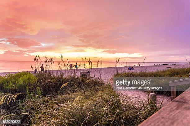 sunset at a pristine beach in idyllic naples, florida, usa - naples florida stock pictures, royalty-free photos & images