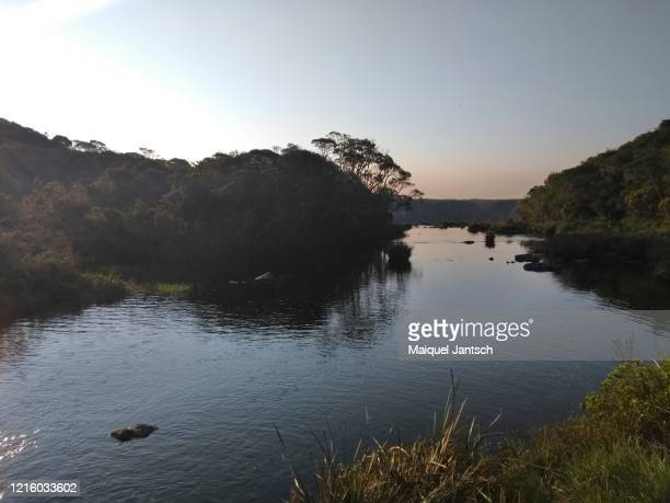 sunset at a trail beside a stream in brazil - mata atlantica stock-fotos und bilder