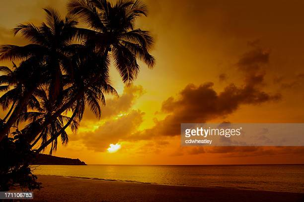 sunset at a tropical beach in the Caribbean