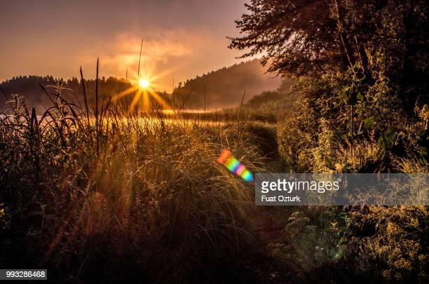 Sunset at Abant Lake