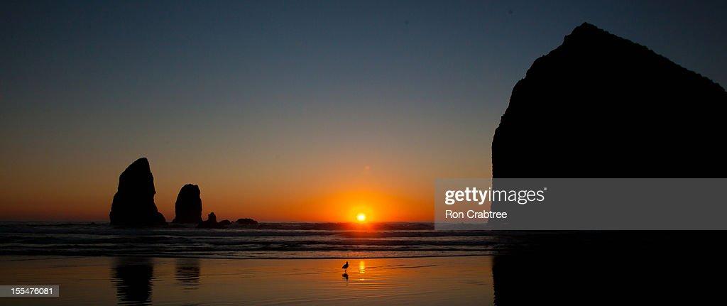Sunset at Cannon Beach, Oregon : ストックフォト