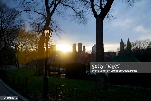 sunset at central park - leonardo costa farias stock photos and pictures