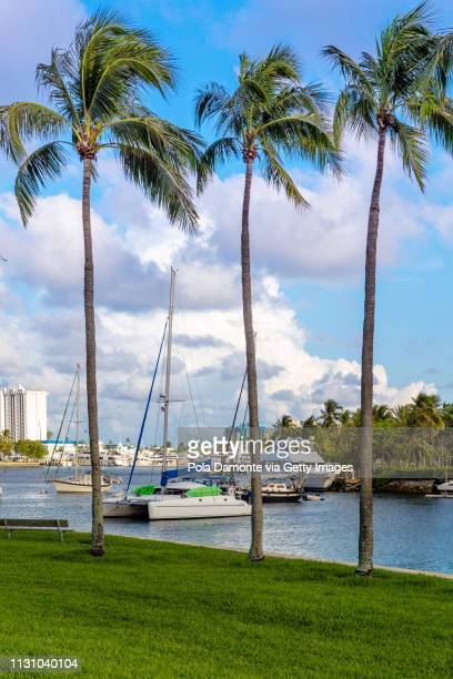 sunset at fort lauderdale canals. luxury yachts in las olas boulevard, florida, usa - north america stock pictures, royalty-free photos & images