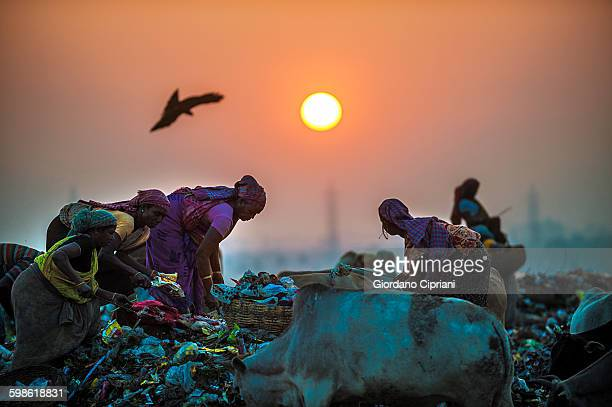 Sunset at garbage dump