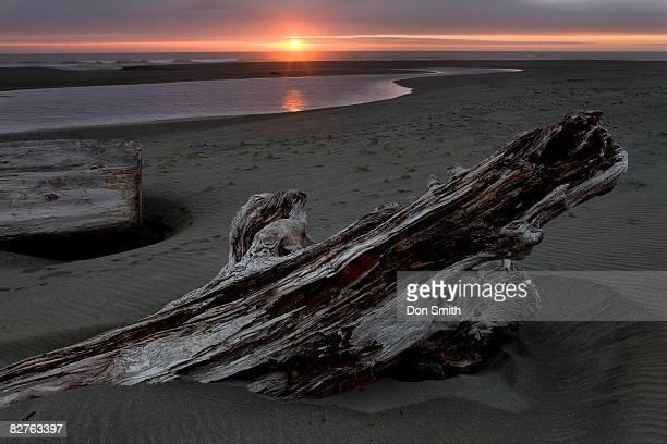sunset at gold's bluff beach - don smith stockfoto's en -beelden