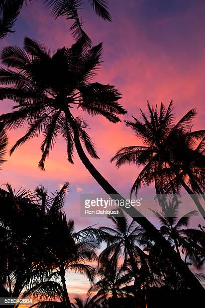 Sunset at Keawekapu Beach; Wailea, Maui, Hawaii, United States of America