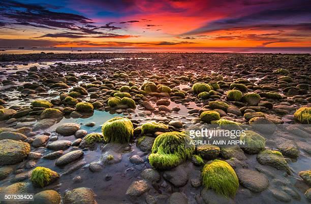 sunset at kuala penyu - sabah state stock pictures, royalty-free photos & images