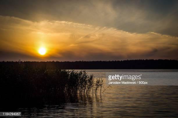 sunset at lake and reeds - maslowski stock-fotos und bilder