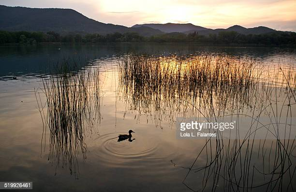 Sunset at Lake Banyoles