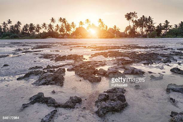 Sunset at low tide with resort in background - Zanzibar