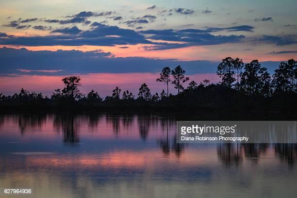 sunset at mrazek pond, everglades national park, florida - everglades national park stock pictures, royalty-free photos & images