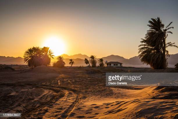 sunset at nabq desert - シャルムエルシェイク ストックフォトと画像