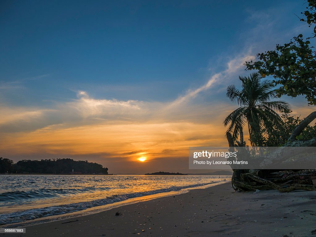 Sunset at Paquetá island : Stock Photo