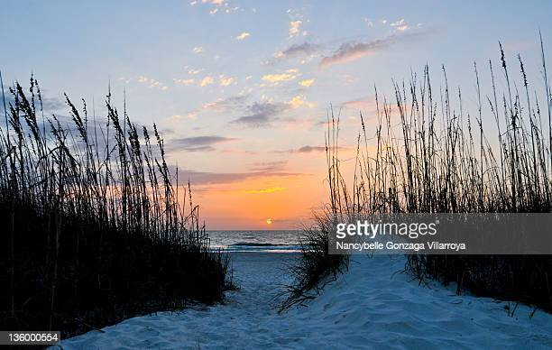 sunset at saint pete beach, florida - nancybelle villarroya stock photos and pictures