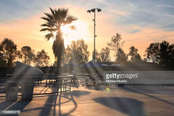 sunset at skate park - santa clara county california stock pictures, royalty-free photos & images