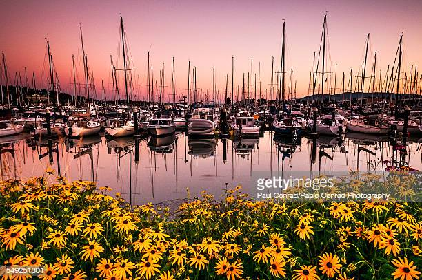 sunset at squalicum harbor - puget sound stock pictures, royalty-free photos & images