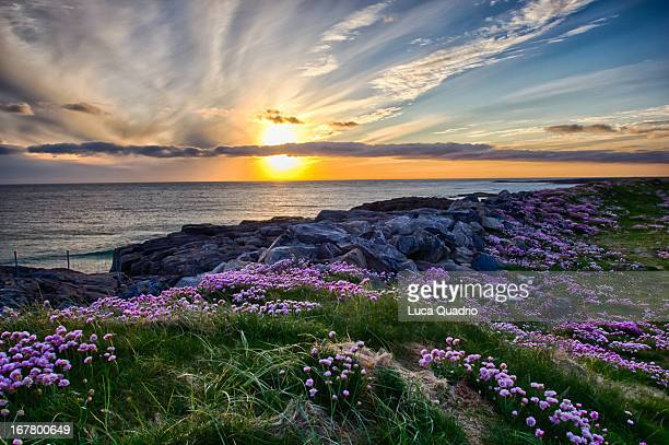 sunset at tangasdale - barra scotland stock pictures, royalty-free photos & images