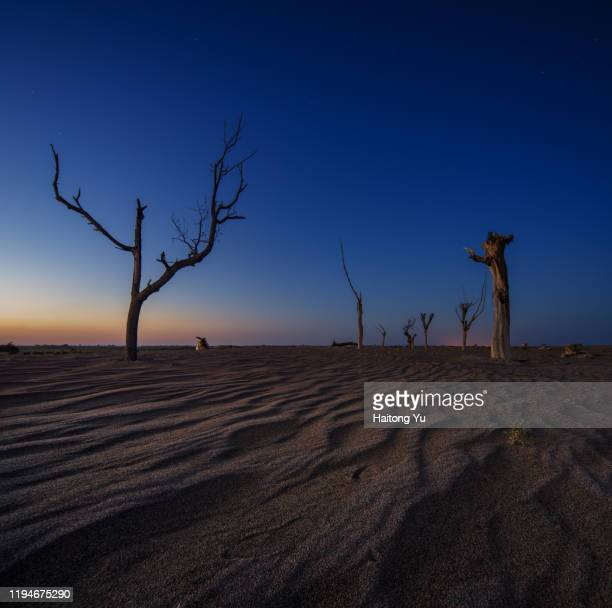 sunset at tengri desert - 甘粛省 ストックフォトと画像