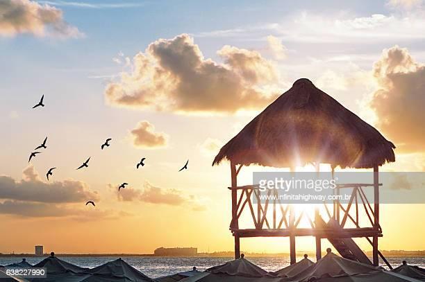sunset at the beach - mujeres fotos stockfoto's en -beelden