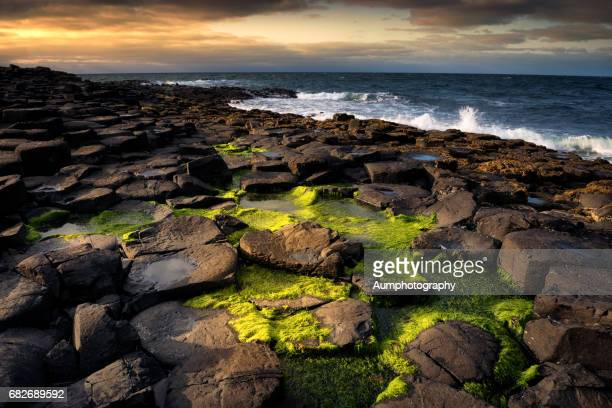 sunset at the giant's causeway. - unesco welterbestätte stock-fotos und bilder