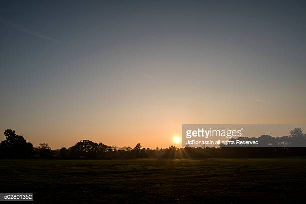 sunset at the park - jcbonassin stock pictures, royalty-free photos & images