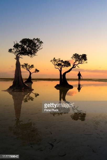 sunset at walakiri beach east sumba, indonesia - bottomless girl stock pictures, royalty-free photos & images