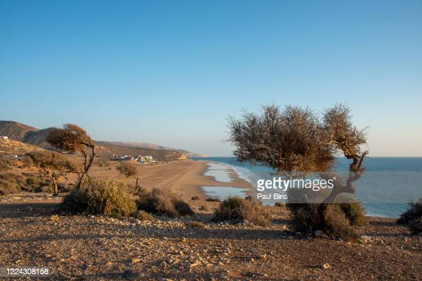 sunset beach landscape near agadir, morocco, - image title stock pictures, royalty-free photos & images