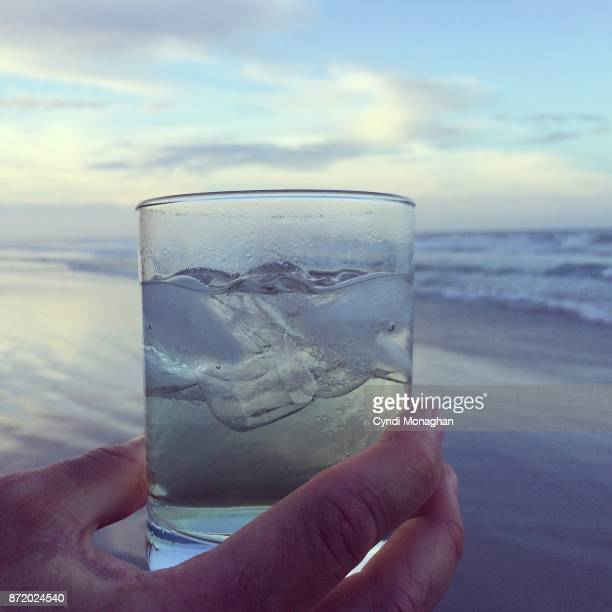 sunset cocktail - vodka stock pictures, royalty-free photos & images