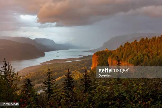 sonnenuntergang columbia river gorge oregon. - kieferngewächse stock-fotos und bilder