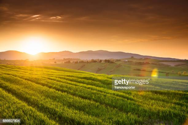 sunset countryside in italy