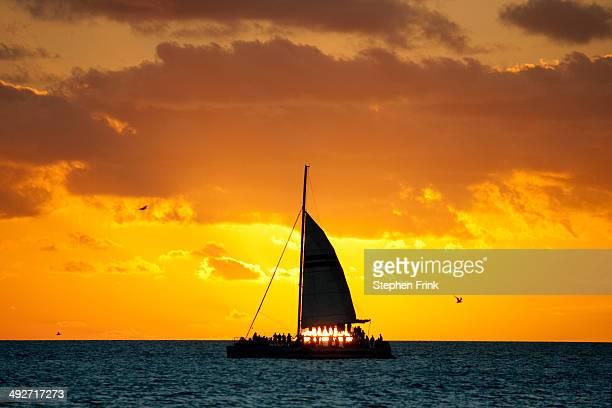 Sunset cruise, Key West.