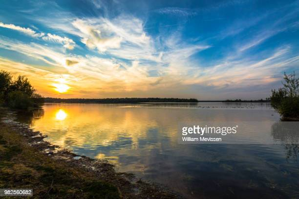 sunset duck party - william mevissen fotografías e imágenes de stock