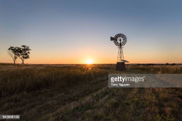 sunset falling behind a windmill. - texas photos et images de collection