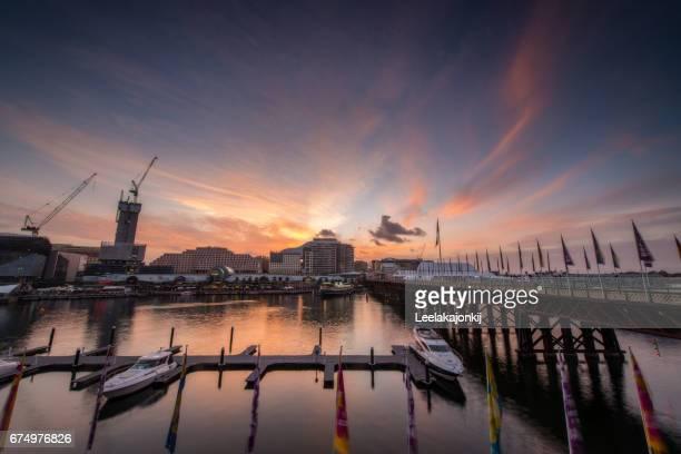 sunset from darling harbor. - ダーリング港 ストックフォトと画像
